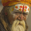 Hindu Holy Man — Stock Photo