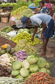 Vegetables for Sale — Stock Photo