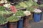 Fresh Vegetables — Foto Stock