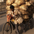 Heavy Load — Stock Photo #8590954