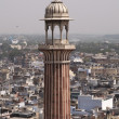 Minaret Over Old Delhi — Stock Photo #8590957