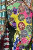 Elefante pintado — Foto de Stock