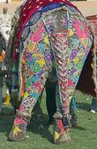 Dekore edilmiş fil — Stok fotoğraf