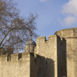 Historic Tower of London - Foto Stock