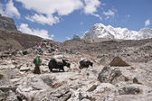 喜马拉雅运输 — 图库照片