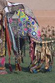 Decorated Indian Elephant — Stock Photo