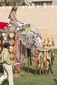 亚洲大象的装饰 — 图库照片