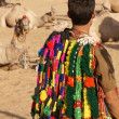 Fashion Accessories For Camels — Stock Photo #9167511