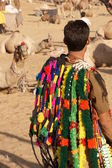 Fashion Accessories For Camels — Stock Photo