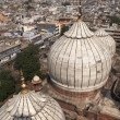 Stock Photo: Domes of JamMasjid