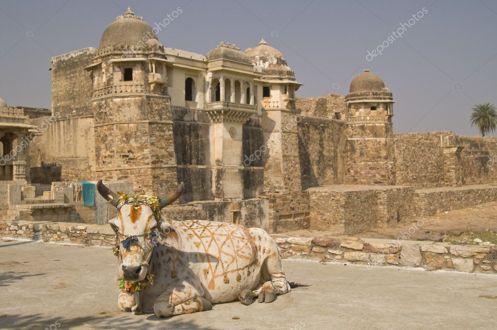 Decorated holy cow lying in front of an ancient ruined palace ((Pratap Palace). Chittaugarh, Rajasthan, India  Foto Stock #9201033