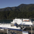 Gateway to South Island - Foto de Stock