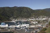 Gateway to South Island — Stock Photo