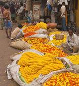 Flower Market — Stok fotoğraf
