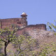 Ancient Indian Fort - Stock Photo