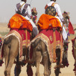 Camel Riders — Stock Photo
