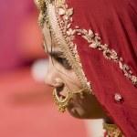 Indian Lady — Stock Photo #9946441