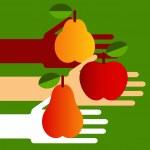 フルーツと手 — ストックベクタ