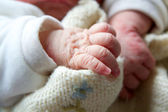 The hand of a newborn — Stock Photo