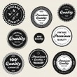 Stockvektor : Vintage premium quality badges