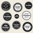 Stock Vector: Vintage premium quality badges