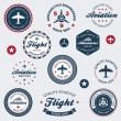 Stock Vector: Vintage aeronautics labels