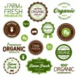 Stock Vector: Organic food labels