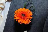 Grooms orange buttonhole. — Stock Photo