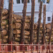 Cargo of Spruce Logs at Dockside — Stockfoto #8003820