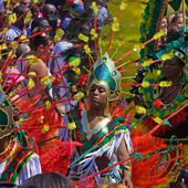 Carnival Participants and Onlookers — Stock Photo