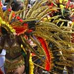 Постер, плакат: Carnival Feathers