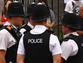Carnaval politie 2 — Stockfoto