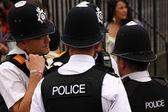 Carnival Police 1 — Stock Photo