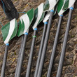 Oars on a Quayside - Stock Photo