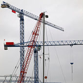 Blue and Red Tower Cranes — Stock Photo