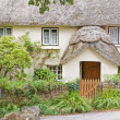 Stock Photo: Thatched Houses