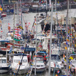 Festival Harbourside — Stock Photo #8506181