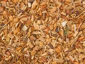 Pedazos de madera astillados — Foto de Stock