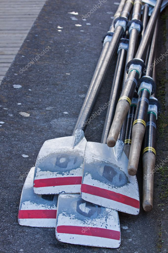 The oars of an eight man rowing crew laid on the dockside after a race — Stock Photo #9219616