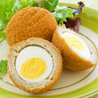 Scotch Eggs - Stock Photo