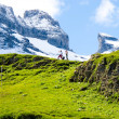 Hikers in the Alps — Stock Photo #8072319