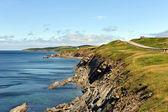 The rugged coast of Cape Breton — Stock Photo