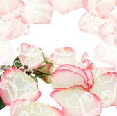 Pretty valentines design with rose — Stock Photo