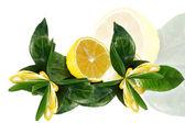 Limon ile yapraklar — Stok fotoğraf