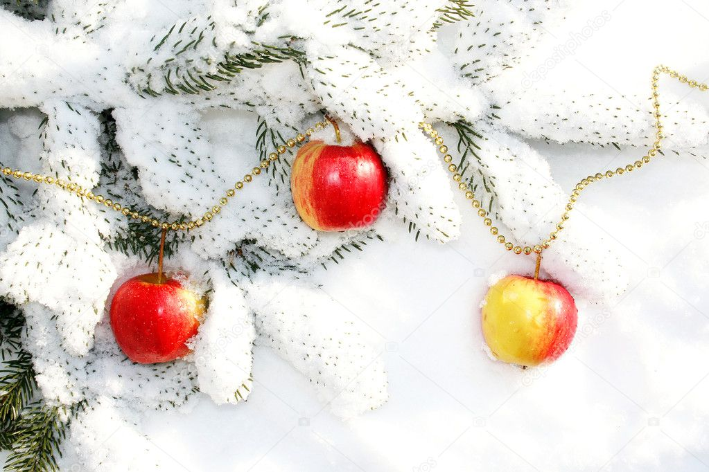 Christmas decoration on a white snow. — Stock Photo #8102995