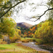 Beautiful autumn landscape - Foto de Stock  