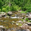Beautiful spring stream — Stock Photo #8238036