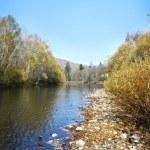 podzimní říční krajina 3 — Stock fotografie