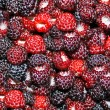 Fresh juicy berries back — Stock Photo