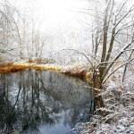nevicata in una libbra di belle invernali — Foto Stock